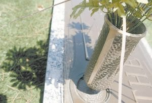 A bronze vase is seen on a headstone at Green Acres Mortuary & Cemetery in Scottsdale, Ariz. While reports of copper wire theft are commonplace, the macabre trend toward stealing metal flower vases from cemeteries has taken on a life of its own. (AP Photo/East Valley Tribune)