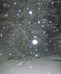 WONDERLAND — Big Cowan was picture perfect late Saturday night as snow fell. (Photo by Carolyn Sturgill)