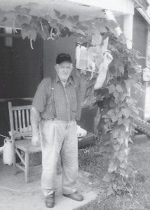 BIG JOHN — Landon Sexton is growing this Big John bean plant at his home at Colson.