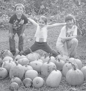 HARVESTING PUMPKINS — Left to right, Preston Helle, Aurora Cornett, and Kelsey Helle helped gather pumpkins in the garden of their grandparents, Donald and Roberta Brown.