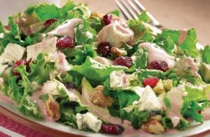 Turkey & Cranberry Encore Salad