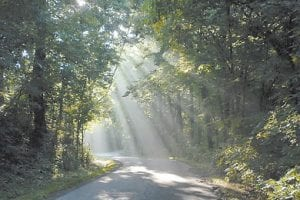 Fog lifted as the sun was shining through trees to illuminate a rural road near Maysville, Ky., last week. (AP Photo/The Ledger Independent, Terry Prather)