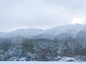 Far from the 'rabbit tracker' snowfall columnist Ike Adams writes about this week, Pine Mountain in Letcher County was covered with a significant amount of snow this week, as is seen in this photo taken Monday at Cram Creek at Mayking. (Photo by Becky Johnson)