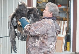 TO BE RELEASED — Master falconer Mitch Whitaker held a two-year-old bald eagle at the Letcher County Extension Office in Whitesburg. The bird was rescued after it got caught in a coyote trap at Dry Fork on January 27 and will be released today (Wednesday) at the extension office. (Photo by Sally Barto)
