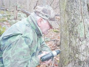 Granville Burke taps a sugar maple tree to collect sap for making maple syrup.