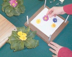 Luann Vermillion demonstrates flower pressings.