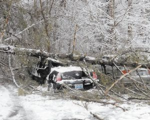 A large tree fell on two cars parked at Whitesburg Appalachian Regional Healthcare Hospital on Feb. 20. The cars belong to ARH employees Jennifer Ihla and Jeffrey Raglin. (Photo by William Farley)