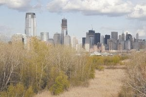 NOW — This photo taken Thursday, April 12 shows the Jersey City and New York City skylines with the green area near Liberty State Park in Jersey City, N.J. in the foreground. Before becoming a park, the area was a site where illegal dumping covered much of the empty land, as seen in photo at left. (AP Photo/Julio Cortez)