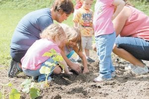 Children from Early Appalachian Childcare helped plant peppers in their garden.