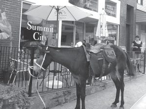 This mule owned by Andy Sturgill seemed unaware of the attention it was getting from passers-by as it stood calmly while hitched to a railing on Main Street in downtown Whitesburg one afternoon last week.