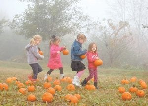 """— Sophia Hogg, Scarlet Stamper, Alli Bailey and Anna Hatton carried pumpkins they picked out of a """"pumpkin patch"""" during a 4-H event held at the Letcher County Extension Office on Tuesday. About 400 kindergarten students from the Letcher County Public Schools and students at Mountain Montessori Preschool participated in the two-day event. In addition to learning how to make pumpkin pie in a bag and pumpkin butter, students got to see barnyard animals including a pig, rabbits, goats, ducks and chickens. (Photo by Sally Barto)"""