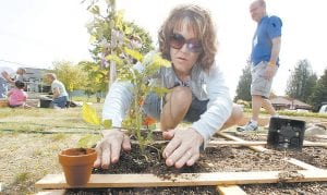 Nicole Wells, photographed working in a community garden at a church in Sherwood, Oregon, now has another good reason to exercise: It may help prevent kidney stones. You don't have to break a sweat or be a super athlete, either. (AP photo)