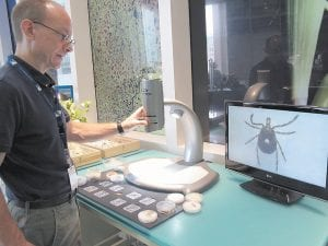 Dr. Colin Brammer, an entomologist at the North Carolina Museum of Natural Sciences, displays a Lone Star tick in a lab in Raleigh, N.C. Doctors across the nation are seeing a surge of sudden meat allergies in longtime carnivores who were bitten by Lone Star ticks, which are found in the Southwest and eastern half of the U.S. (AP Photo)