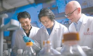 This photo shows Dr. Nathan Welham, right, visiting scientist Kohei Nishimoto, left, and associate scientist Changying Ling working in the Welham Lab at the Wisconsin Institute for Medical Research in Madison. Welham and his team have bio-engineered vocal chords that can generate a voice in humans. (John Maniaci/UW Health via AP)