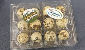 """Quail eggs sold by Aaron Halcomb, 21, are stamped """"Appalachian Proud"""" and """"Kentucky Proud."""""""