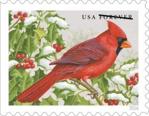 This photo shows the stamp honoring Kentucky's state bird, the northern cardinal.