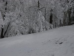Lee Anna Mullins took this photo at Mountain View Drive in Whitesburg.