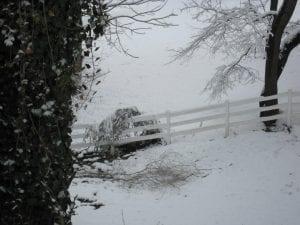 Liz Simon took this photo on Feb. 20 in Mayking.