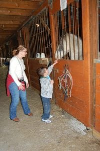 Angie Gibbs, a teacher at MJP, watched as Mark Howard touched a horse.