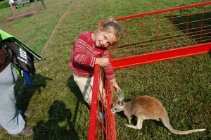Ashley Faith McClain, 5, of Isom, petted an eight-month-old joey named Hopper at the Letcher County Kids' Day Back to School Bash at River Park in Whitesburg on July 29. Ashley, who is the daughter of Mary Coomer and Jonathan McClain, is in kindergarten at Beckham Bates Elementary School.