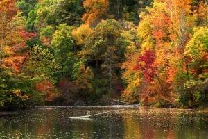 Kay Duke, of Blackey, took this photo at Fishpond Lake.
